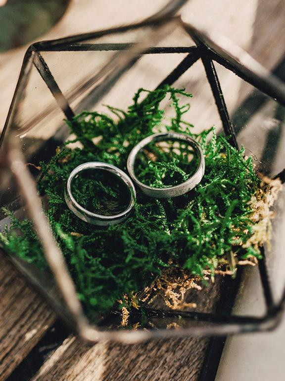 Zwei Ringe in Moos auf Holztisch